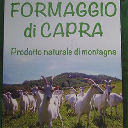 Picture for manufacturer La Gacciola
