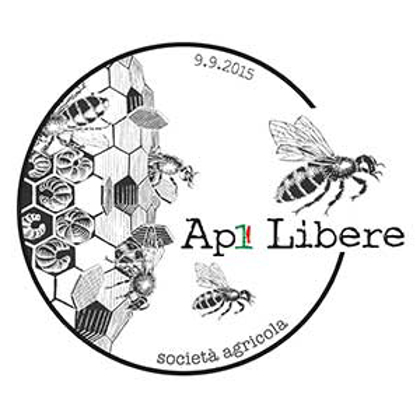 Picture for manufacturer Api Libere