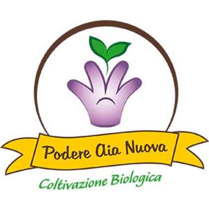 Picture for manufacturer Podere Aia Nuova