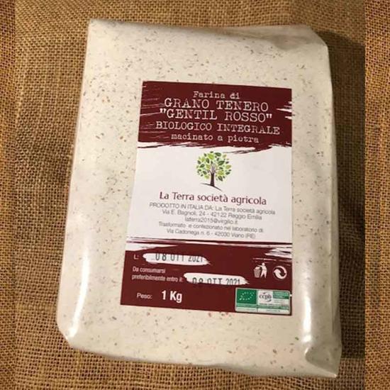 Farina di grano tenero gentil rosso integrale e semi-integrale