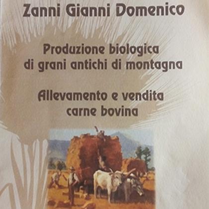 Picture for manufacturer Gianni Zanni